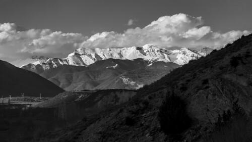 Pirineo blanco y negro