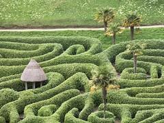 Des Gärtners Haus? (mobilix) Tags: labyrinth glendurgangarden palmen park einsonce cornwall uk england nationaltrust gärtnerhaus gardener'scottage kw20437