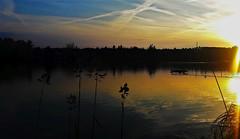 Hangulatkép egy nyári estéről (Szombathely) (milankalman) Tags: evening golden summer landscape