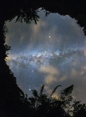 Astronomical numbers (Robyn Hooz) Tags: stelle reunion astronomy alberi foglie nuvole clouds mankind stars 200miliardi billions life death deep deepspace