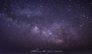 Il cielo era chiaro – straordinariamente chiaro e il luccichio di tutte le stelle pareva un unico palpito regolato da un polso comune...
