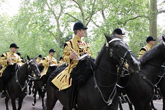 The Band of The Household Cavalry (Ian Press Photography) Tags: band the household cavalry london england british ceremony ceremonial army military trooping colour music musician horse horses mounted soldier soldiers blues royals house hold lifeguard life guard guards color tourist tourism uk lifeguards