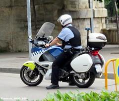 Policia Municipal de Girona (Francis Lenn) Tags: honda motorcycle moto police policia policía patrulla patrol cop girona catalonia catalunya