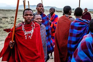 Massai goup