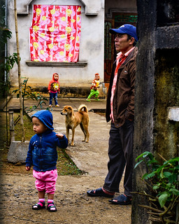 Man, Kids and Dog - Explore