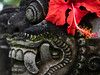Flower on Statue (cooneybw) Tags: indonesia traveling asia temple