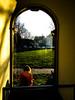 Sunset writer (A. Yousuf Kurniawan) Tags: sunset window people writer yellow light streetphotography cameraphone colourstreetphotography cameraphonestreet phonestreet grass