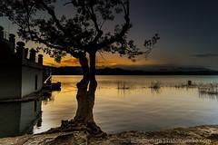 _DSC0678-1 (lluisg8207) Tags: banyoles girona catalunya landscape paissatge paisaje sonya7rm3 penyafotogràficabadalona nsfotografia nsexperience atardecer sunset