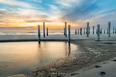 Sunset @ Noordzee, the Netherlands (Henk Verheyen) Tags: nl nederland netherlands noordholland noordzee zonsondergang bloem bloembollen buiten lente outdoor spring strand sunset