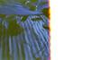 (ニノ Nino) Tags: kodak max 400 burn 35 mm 35mm film analog analogue olympus mju ii
