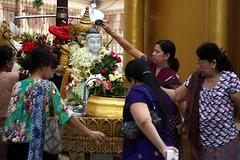 Shwedagon Pagoda (mbphillips) Tags: မြန်မာ ရန်ကုန် shwedagonpagoda ရွှေတိဂုံစေတီတော် southeastasia ミャンマー 미얀마 缅甸 緬甸 asia アジア 아시아 亚洲 亞洲 myanmar burma မြန်မာနိုင်ငံက mbphillips geotagged photojournalism photojournalist 양곤 rangoon 仰光 people gente 人 사람들 buddha buddhism 불교 佛教 budismo temple fareast canonef50mmf18ii buddhist travel ヤンゴン 캐논 canoneos450d canoneosrebelxsi canoneoskissx2 canon canon450d yangon