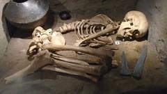 (sftrajan) Tags: archaeology grave skeleton prehistoric spain bones museo arqueología museum esqueleto archäologie 考古学 museoarqueológiconacional españa madrid