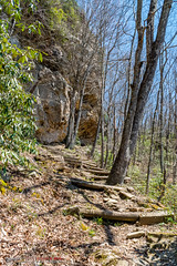 Chadwell Gap Trail (mikerhicks) Tags: chadwellgaptrail cubage cumberlandgapnationalhistoricalpark ewing hdr hiking nationalpark nature sonya6500 usa unitedstates virginia history outdoors exif:aperture=ƒ11 camera:make=sony exif:lens=epz18105mmf4goss exif:make=sony geo:location=cubage camera:model=ilce6500 exif:focallength=18mm geo:country=unitedstates geo:city=ewing exif:isospeed=200 geo:lon=83510531666667 geo:lat=36668541666667 geo:state=virginia exif:model=ilce6500