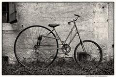 Cicli e ricicli (Teone!) Tags: feltre bycicle custom sepia bike wheels