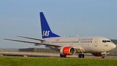 """Olof Viking"" SAS Scandinavian Airline System LN-RPY Boeing 737-683 cn/28292-116 @ EHAM / AMS Taxiway Q 28-12-2015 (Nabil Molinari Photography) Tags: olofviking sas scandinavian airline system lnrpy boeing 737683 cn28292116 eham ams taxiway q 28122015"