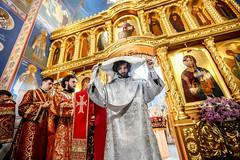 2018.04.29 liturgiya Akademicheskiy khram KDAiS (34)