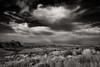 Sotol Vista Monochrome - Big Bend National Park (James Duckworth) Tags: bigbendnationalpark jamesduckworthphotography santaelenacanyon sotolvista texas blackandwhite cactus clouds descrt fineartphotography grasses landscape monochrome mountains nobody sky vista