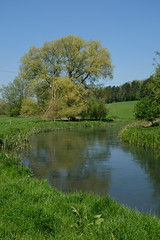 River Coln (Nigel Musgrove-2.5 million views-thank you!) Tags: coln st adwyns gloucestershire england river valley cotswolds
