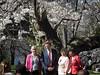 Sakura gets political (Genie W.) Tags: highpark cherryblossom sakura toronto spring canonpowershotsx40hs johntory mayorjohntory politicians
