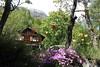 Planuit (bulbocode909) Tags: valais suisse planuit chalets montagnes nature forêts arbres printemps hameaux fleurs tulipes vert rouge jaune troncs