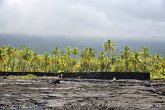 Landscape Contrast (Sudhakar Ganti) Tags: puuhonua o honaunau national historical park hawaii