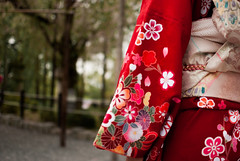 Red Passion II (mara.ortuso) Tags: red kimono kyoto street japan flowerpower female geisha