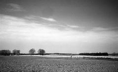 The stump (Rosenthal Photography) Tags: baüme landschaft baumstumpf bnw schwarzweiss asa200 35mm städte offensen ff135 meinstedt feld 20180401 rodinal15021°c10min infrarot ilfordsfx rotfilter olympus35rd analog bw dörfer siedlungen stump trees fields spring april landscape nature mood blackandwhite infrared ir olympus olympus35 35rd fzuiko zuiko 40mm f17 ilford spx200 spx red filter redfilter rodinal 150 epson v800