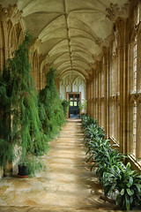 The Orangery, Forde Abbey Gardens (crafty1tutu (Ann)) Tags: travel holiday 2017 unitedkingdom uk england fordeabbeyandgardens dorset chard somerset manorhouse garden orangery crafty1tutu canon5dmkiii canon24105lserieslens anncameron