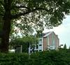 Behind the green (frankdorgathen) Tags: tree baum green grün haus house building gebäude essen ruhrgebiet ruhrpott urban iphone 8plus smartphone