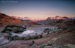 A Beautiful Morning In Langdale (.Brian Kerr Photography.) Tags: cumbria lakedistrict langdale landscapephotography langdalepikes langdalevalley bleatarn briankerrphotography briankerrphoto frozen frosty sunrise warmth mountains tarn trees availablelight a7rii outdoor outdoorphotography opoty nature natural naturallandscape visitbritain landscape vanguarduk formatthitech sonyuk mountain sky grass