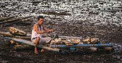 Man preparing his fish net. (vincent.lecolley) Tags: menatwork man asia asian philippines fisherman lowtide negrosoriental bais portrait culture tradition work fishing documentary d3300 nikon