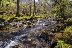 River Dysynni 2 (Neilpl) Tags: wales dysynni river snowdonia mountains landscape nature travel holiday springtime sunshine sony a7rii zeiss loxia 21mm beautiful naturalbeauty grass uk