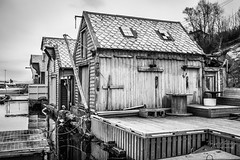 """""""The old boat houses"""" (Terje Helberg Photography) Tags: bw forfall blackandwhite bnw boathouse coast coastal coastalenvironement decay dock harbor harbour mono monochrome neglected old sea seascape unattended water woodhouse woodenhouse"""