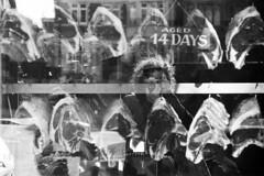 14 DAYS (Cédric Belotti) Tags: pentax pentaxk1000 film argentique noiretblanc blackandwhite monochrome extérieur ilford autoportrait selfportrait