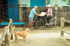taking another chance at winning a fortune (the foreign photographer - ฝรั่งถ่) Tags: man buying lottery ticket bicycles dog bridge railing khlong thanon portraits bangkhen bangkok thailand canon