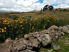 20180409_104026 (asterisktom) Tags: tripecuadorperu2018 2018 peru puno april chucuito may