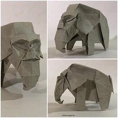 "Sketch: ""Man-moth"" #artist #artistsoninstagram #origami #origamiart #josephwuorigami #josephwu #paperart #paperartist #paperartistcollective (Joseph Wu Origami) Tags: instagram ifttt"