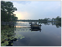 Reflections on paradise (david.hayes77) Tags: seaside westernlake lilies evening 2018 florida watercolor 30a fl usa canoe iphone5s contrejour landscape reflections