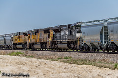 NS 2651 | EMD SD70M-2 | UP Jonesboro Subdivision (M.J. Scanlon) Tags: 2018 ac44cwcte arkansas business canon capture cargo color commerce digital eos engine fairoaks freight ge haul horsepower image impression landscape locomotive logistics mjscanlon mjscanlonphotography mbumhs may merchandise mojo move mover moving outdoor outdoors perspective photo photograph photographer photography picture power rail railfan railfanning railroad railroader railway real scanlon sky steelwheels super track train trains transport transportation tree up up5586 upjonesborosub upjonesborosubdivision unionpacific unittrain view wow ©mjscanlon ©mjscanlonphotography ns2651 emd sd70m2 helper