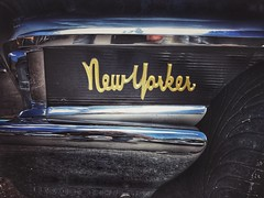 New Yorker (shollingsworth) Tags: fineartphotography classiccars typography hollingsworth newyorker car auto automobile type letterd letters emblem