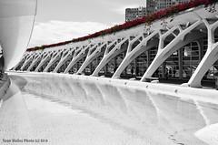 CAC galeria (tonomf) Tags: ciudaddelasartesylasciencias valencia blancoynegro bw blackandwhite ciudad