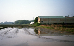 Factory by the rice paddy (odeleapple) Tags: olympus 35rc ezuiko 42mm fujicolorsuperiaxtra400 film rice paddy factory reflection