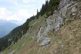 Trail to Chalets de l'Eau Froide @ Hike to Pointe de Vélan