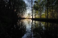 Keravanjoki Water Reflections (talaakso) Tags: finland heijastus hyvinkää keravanjoki olympus olympustoughtg5 olympustg5 tg5 toughtg5 terolaakso vedenpinta waterreflection heijastukset reflection reflexion talaakso watersurface uusimaa fi