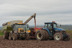 A JCB 3185 Tractor with a Cross Engineering 165 Chaser Bin filling a Vaderstad Rapid Seed Drill drawn by a Ford 8770 Tractor (Shane Casey CK25) Tags: jcb 3185 tractor cross engineering 165 chaser bin filling vaderstad rapid seed drill drawn ford 8770 casenewholland blue newholland nh cnh cork city spring barley traktor trekker traktori tracteur trator ciągnik sow sowing set setting drilling tillage till tilling plant planting crop crops cereal cereals county ireland irish farm farmer farming agri agriculture contractor field ground soil dirt earth dust work working horse power horsepower hp pull pulling machine machinery grow growing nikon d7200