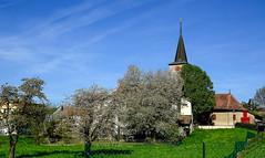 Eglise de Gollion (Diegojack) Tags: gollion vaud suisse sonyrx10m3 monuments eglise printemps cerisiers fleurs paysages groupenuagesetciel