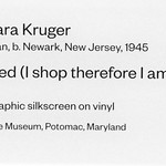 Untitled (I shop therefore I am) by Barbara Kruger thumbnail