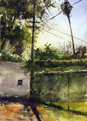 """Watercolor for a 20-30 minute challenge, 7x5"""" (Sherry Schmidt) Tags: art painting watercolor watercolour backyard garden gardening palms plants southpasadena california city powerlines utilitypoles fence"""
