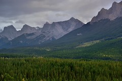 A Look Across the Mountainside of the Rundle Peaks to the Three Sisters (Banff National Park) (thor_mark ) Tags: nikond800e lookingsse day2 triptoalbertaandbritishcolumbia banffnationalpark capturenx2edited colorefexpro mountrundle rockymountains canadianrockies southerncontinentalranges southbanffranges rundlepeaks eastendofrundle halingpeak mountlawrencegrassi thethreesisters outside nature landscape overcast rollinghillsides mountains mountainsindistance mountainsoffindistance trees hillsideoftrees evergreens bowvalley project365 alberta canada