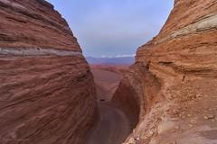 The N'trance (Robelier Photoexplorer) Tags: atacama desert landscapephotography nature sand geology chile sonyalpha